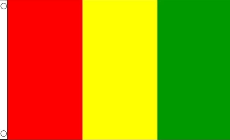 Vlag Guinee Guinese vlaggen