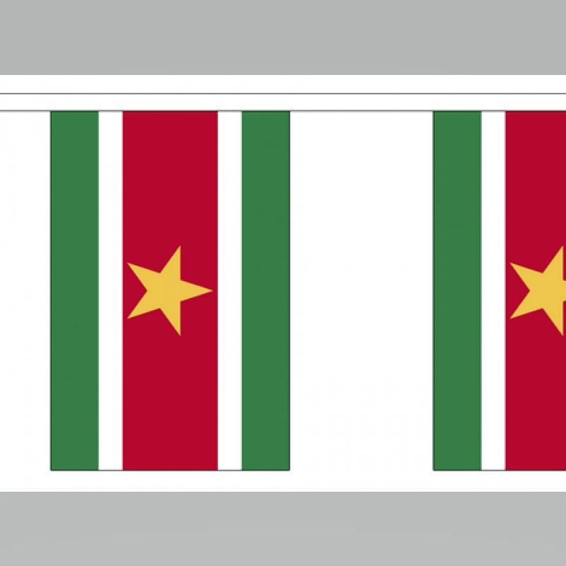 Surinaamse vlaggenlijn slinger 3 meter lang