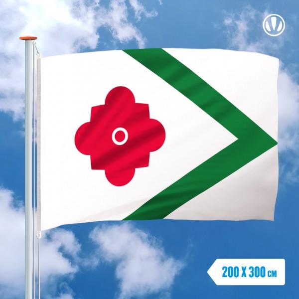 Grote Mastvlag Landerd