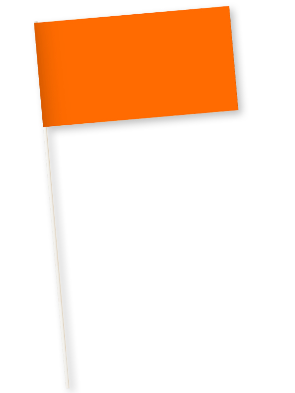 oranje zwaaivlaggetjes papier 11x21cm 10 stuks