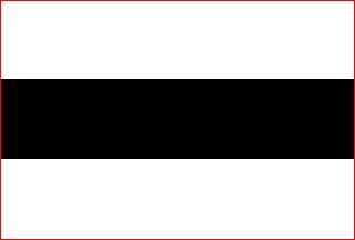 vlag gemeente Delft, Delftse vlag 30x45cm