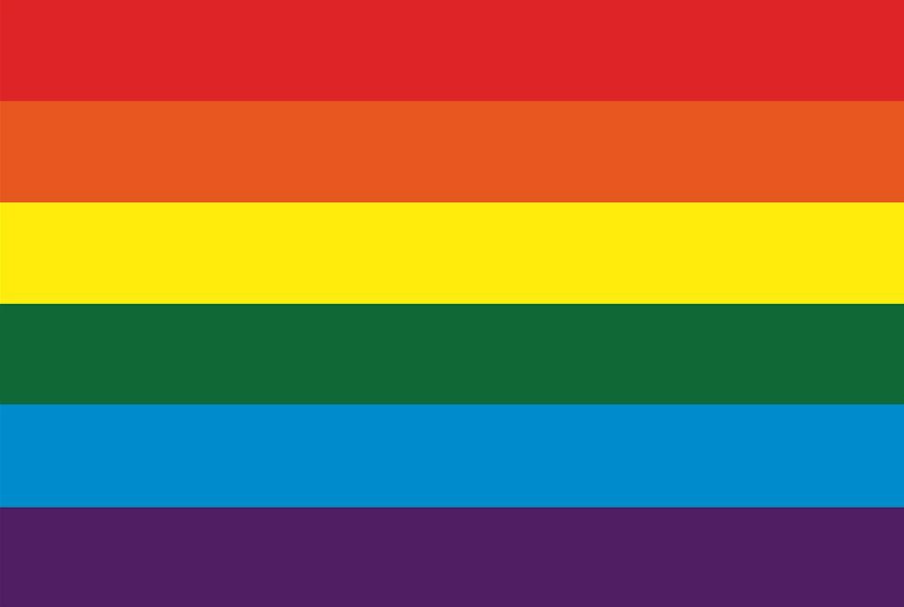 Regenboogvlag 200x300cm grote mastvlag Coming Out Dag