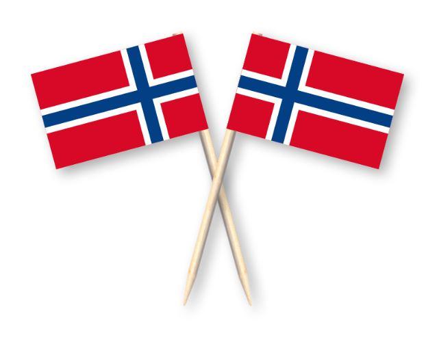 Cocktailprikkers met Noorse vlag, Noorwegen Kaasprikkers, 50 stuks