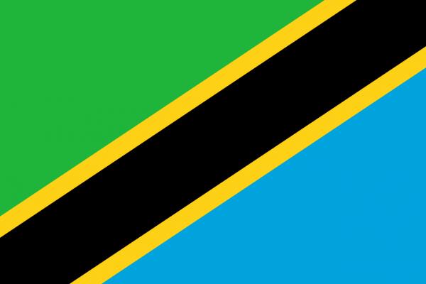 Vlag Tanzania 100x150cm Glanspoly