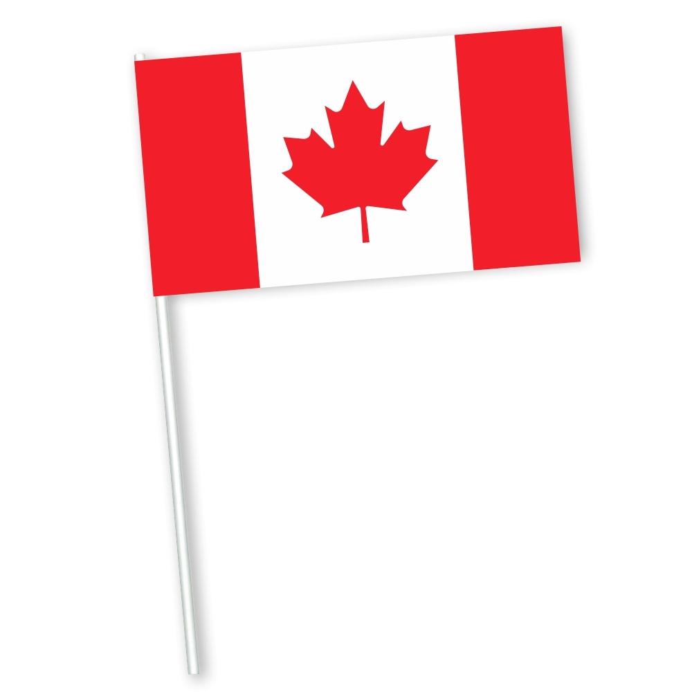 Canadese zwaaivlag met vlag Canada