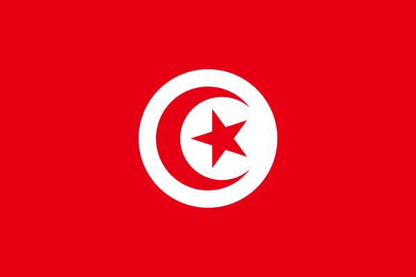 Vlag Tunesie 100x150cm Glanspoly