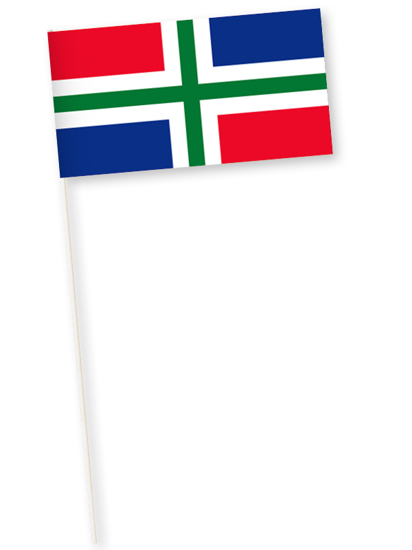 zwaaivlaggetjes Groningen 11x21cm