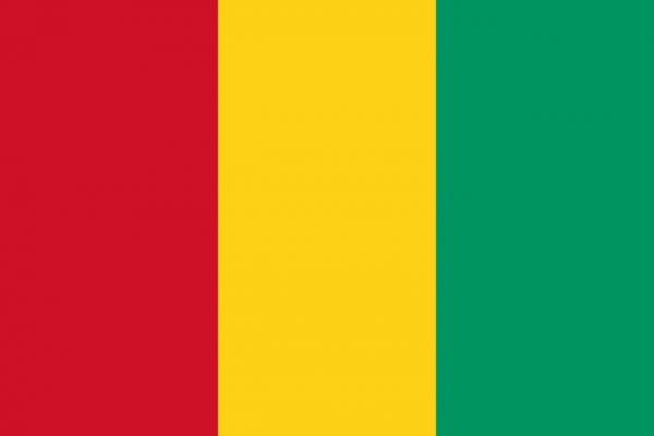 Tafelvlag Guinee met standaard