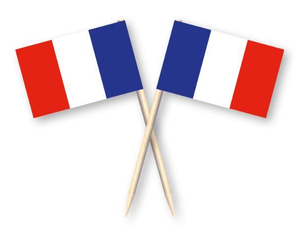 Cocktailprikkers met Franse vlag, Frankrijk Kaasprikkers, 50 stuks