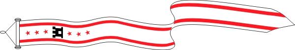 Wimpel Drenthe 25x300cm met stokje