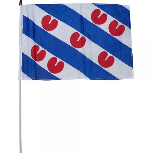 Zwaaivlag Friesland xl 50x70cm