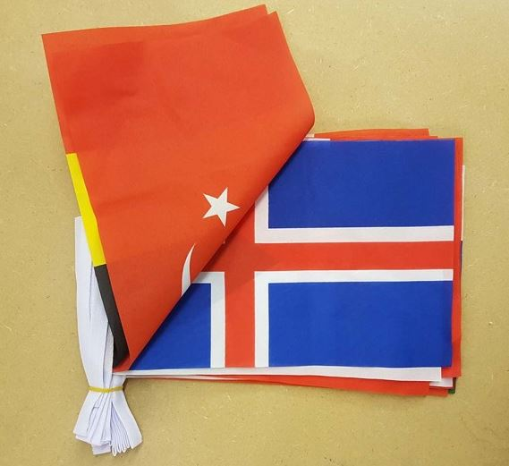 Vlaggenlijn Europese Landenvlaggen 8m