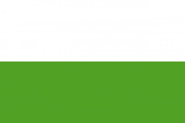 Grote vlag Aalten