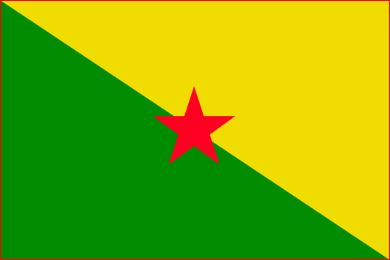 vlag Frans-Guyana 20x30cm