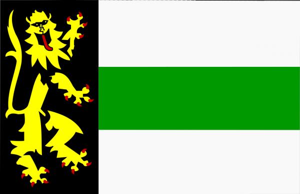 Grote vlag Druten