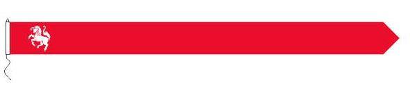 Wimpel Twentse Ros 25x300cm koord en lusje