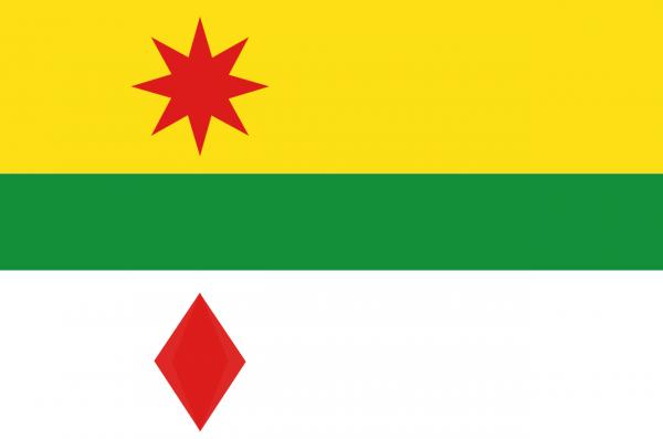 Grote vlag Lansingerland