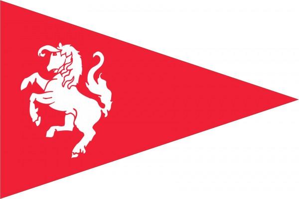 Puntvlag Twentse Ros 30c45cm ookwel vaantje of wimpel genoemd