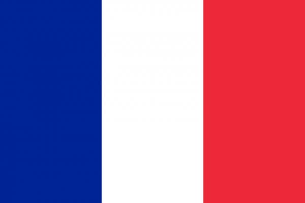 Vlag Frans-Guyana 100x150cm Glanspoly