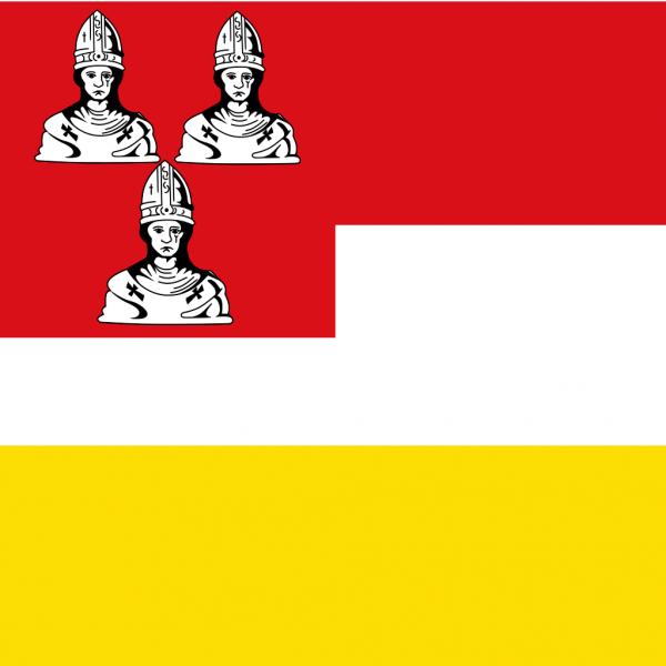Grote vlag Eemnes