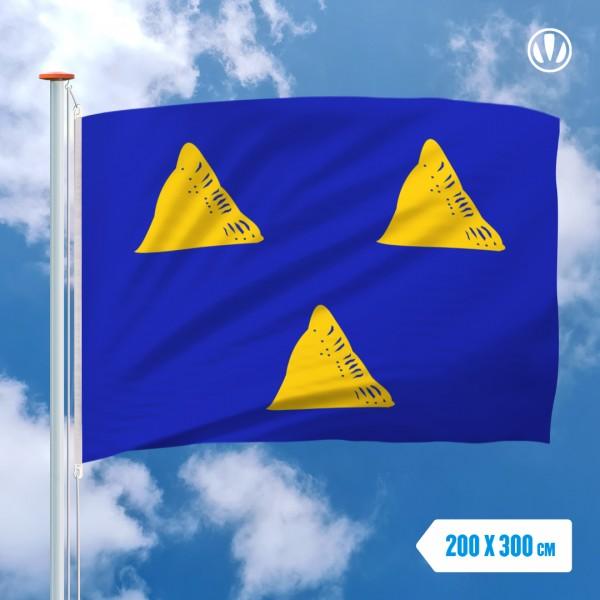 Grote Mastvlag Tubbergen