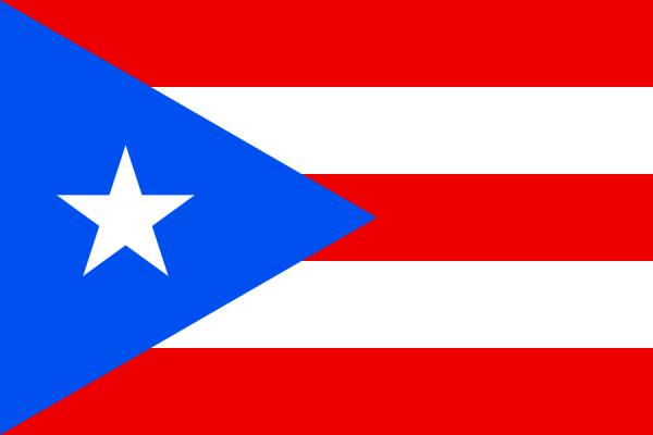 Tafelvlaggen Puerto Rico 10x15cm | Puerto Ricaanse tafelvlag