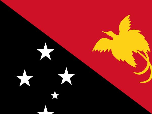 vlag Papoea Nieuw Guinea 30x45cm
