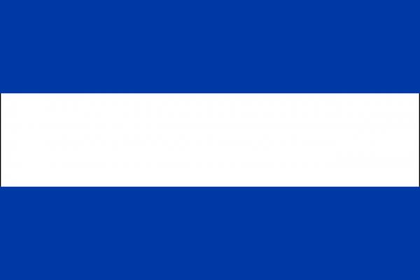 Grote vlag Almelo