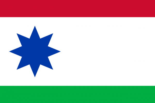 Grote vlag Achtkarspelen