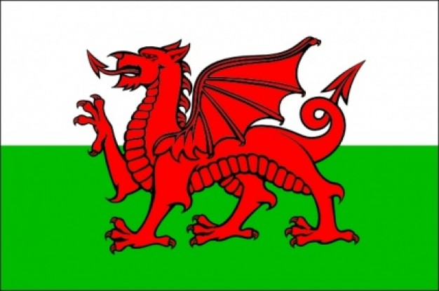 vlag Wales 50x75cm