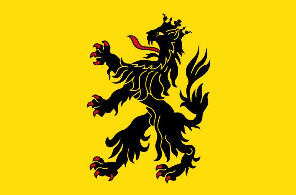 Grote vlag Hulst