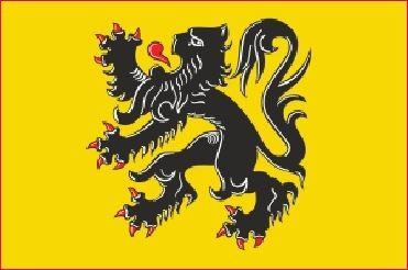 Autovlag Vlaanderen Vlaamse Leeuw autovlaggen