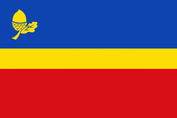 Grote vlag Waalre