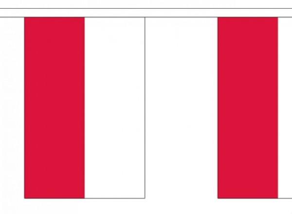 Vlaggenlijn Polen 3m