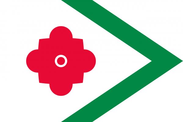 Grote vlag Landerd