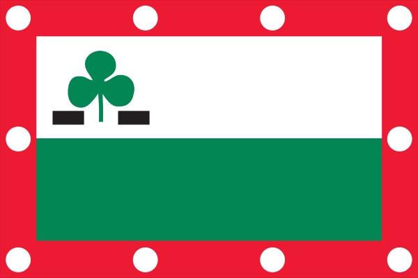 vlag Meppel | Meppelse vlag 70x100cm