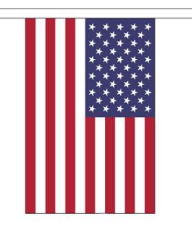 Vlaggenlijn Amerika (rechthoekig, stof) 9m