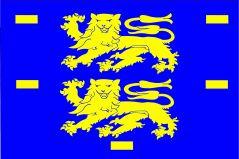 Vlag West-Friesland 20x30cm