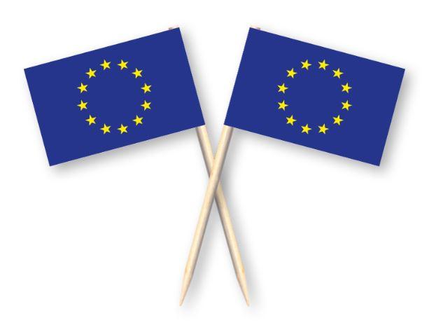 Cocktailprikkers met Europese Unie vlag, EU Kaasprikkers, 50 stuks