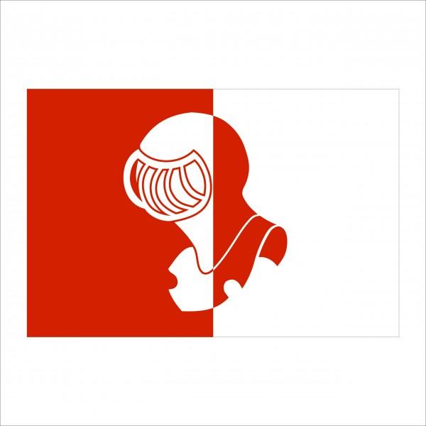 vlag helmond 200x300cm