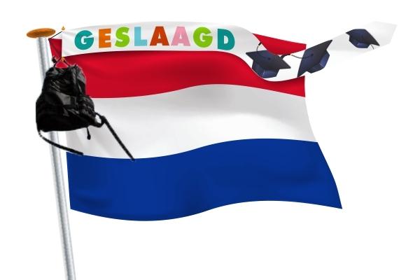 geslaagd wimpel 25x300 Vrolijke kleuren met Nederlandsevlag