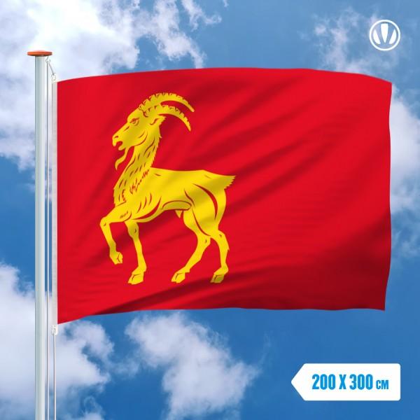Grote Mastvlag Boxmeer
