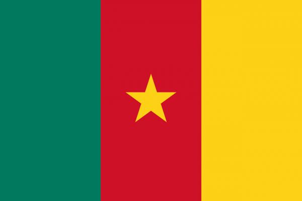 Tafelvlag Kameroen met standaard