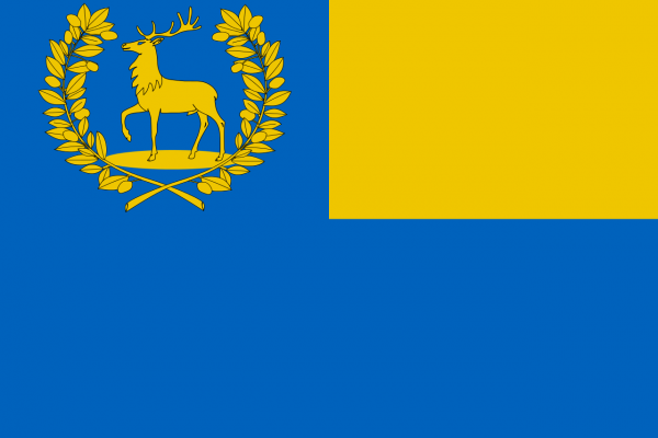 Grote vlag Epe