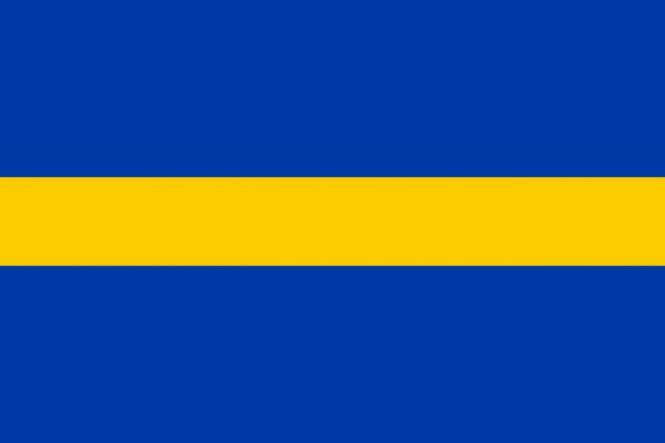 Vlag Borne