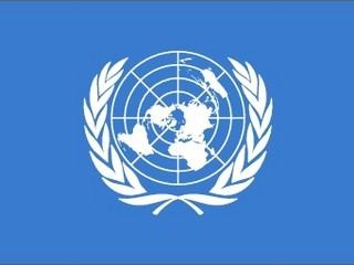 Vlag Verenigde Naties 20x30cm