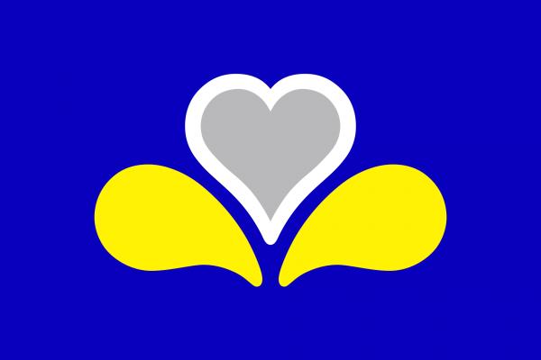 Vlag Brussel (HG) 100x150cm