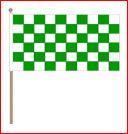 Zwaaivlag Groen Wit geblokt 45x70cm met stok van 75cm