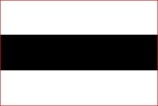 Vlag gemeente Delft | Delftse vlaggen 20x30cm