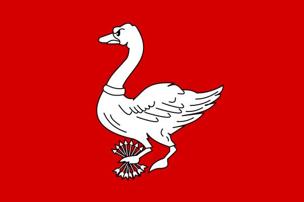 Grote vlag Landsmeer